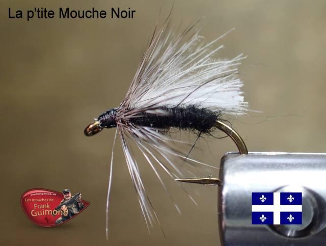 ptite-mouche-noir