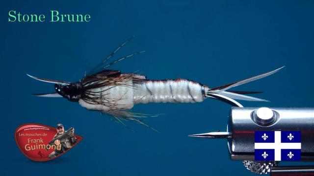 stone-brune-ventre