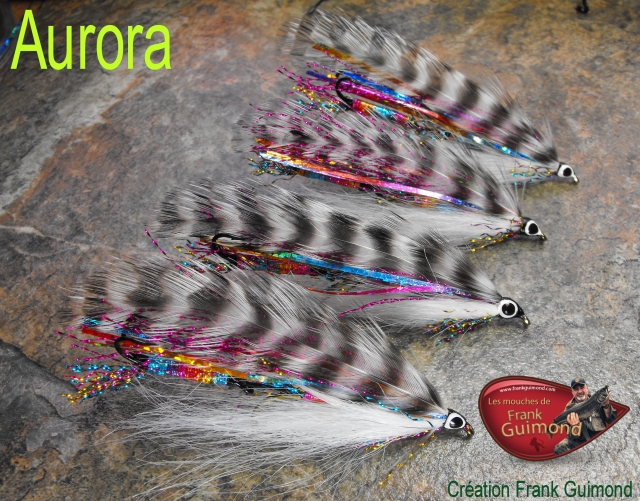 Aurora 4 tandem