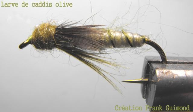 larve de caddis olive