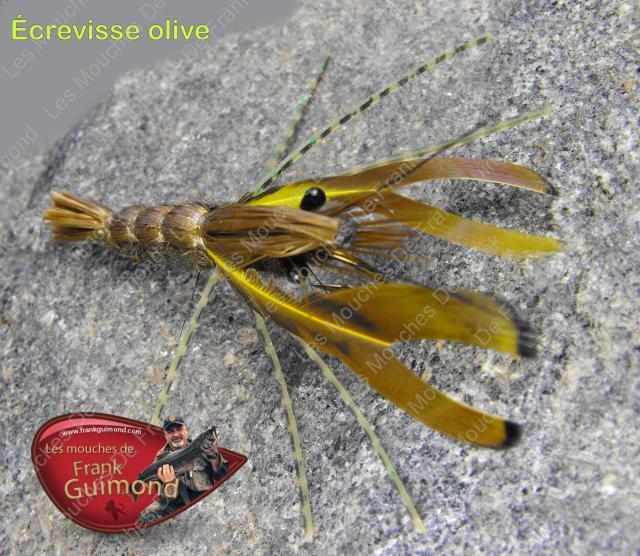 c3a9crevisse-olive-sur-pierre