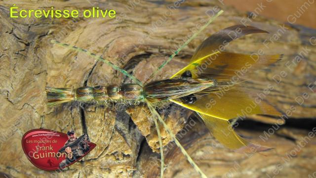 c3a9crevisse-olive[1]