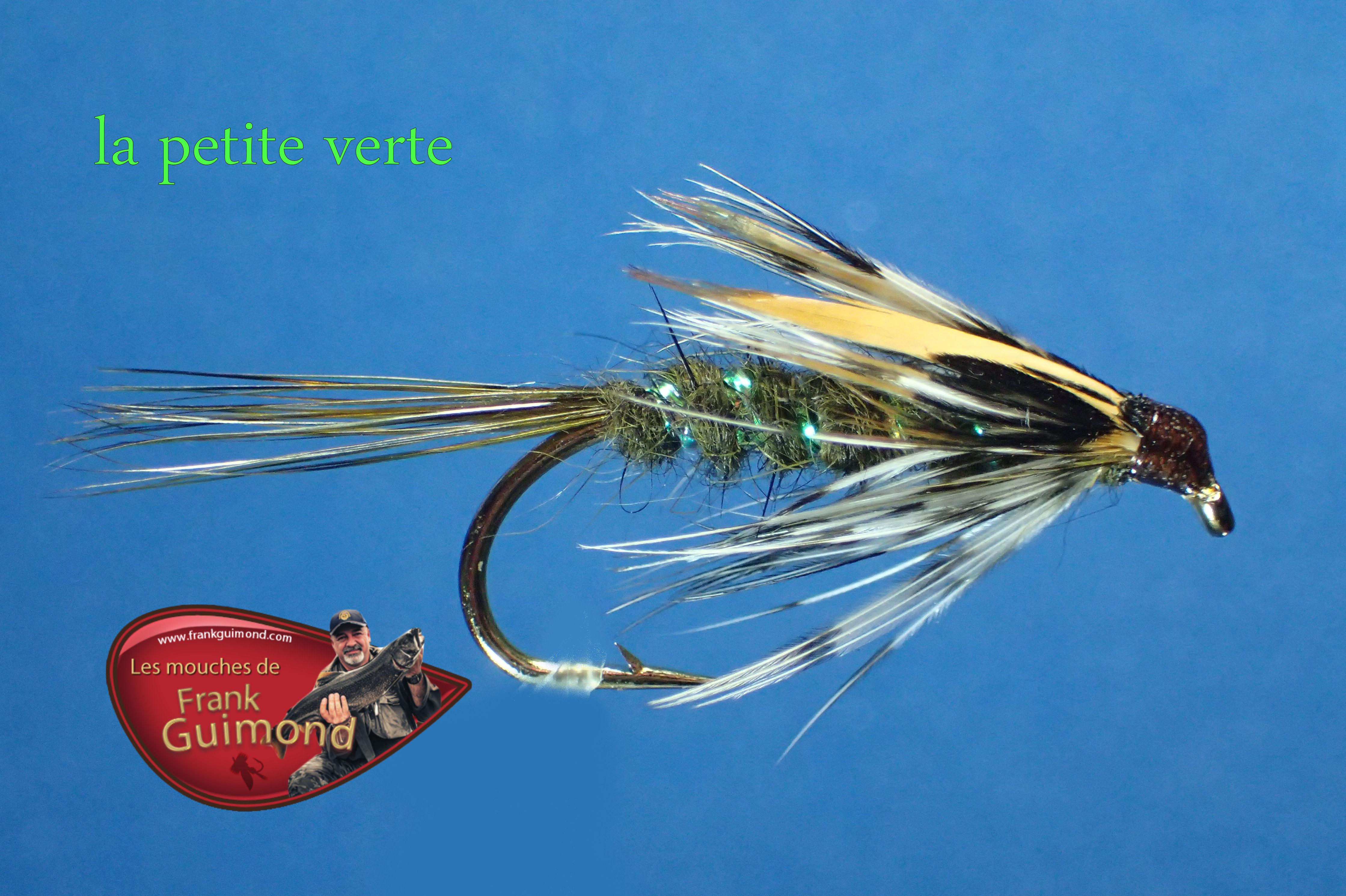 Une petite mergente les mouches de frank guimond y as d 39 la b bitte en clic - Invasion de mouches vertes ...