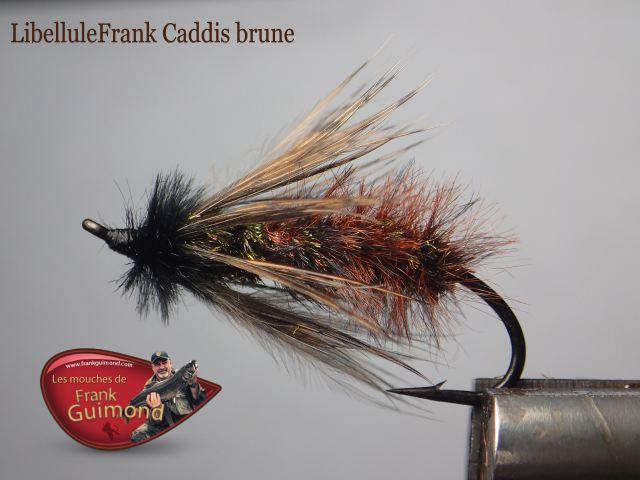 libellulefrank caddis brune